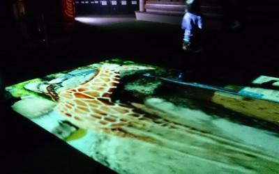 いしかわ動物園アニマルプール、10月11日・12日で最後!!