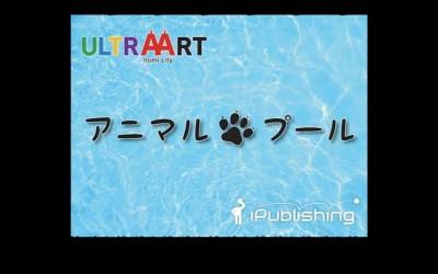 今年も開催! いしかわ動物園ナイトズー連動企画「アニマルプール」!!