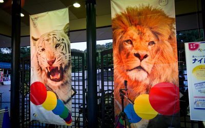 いしかわ動物園ナイトZOO 2020、開催!